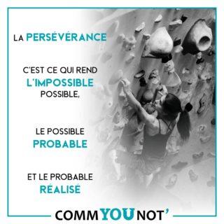 """- Persévérer ; verbe intransitif : """"Continuer de faire ce qu'on a résolu, par un acte de volonté renouvelé"""". Et vous, êtes-vous persévérant ? Volontaire ? Acharné ? La volonté vous pousse en avant, elle rend l'impossible réalisable ! Ne lâchez jamais rien !  #commyounot #montargis #motivation #impossible #rêves #inspiration #perseverance #volonté  #acharnement #volontaire #resolution #dreams"""